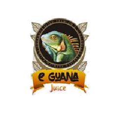 EGUANALOGO2